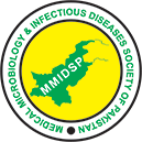 MMIDSP